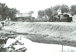 Train Passing next to small pond in town