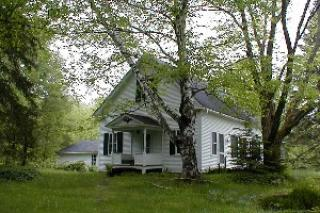 Small white house in middle of forest in summer